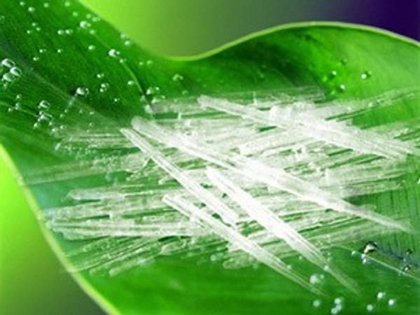 Bilde av Menthol,  Krystaller 100 gram