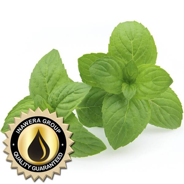 Bilde av Inawera (INW) - Mint Flavor, Aroma